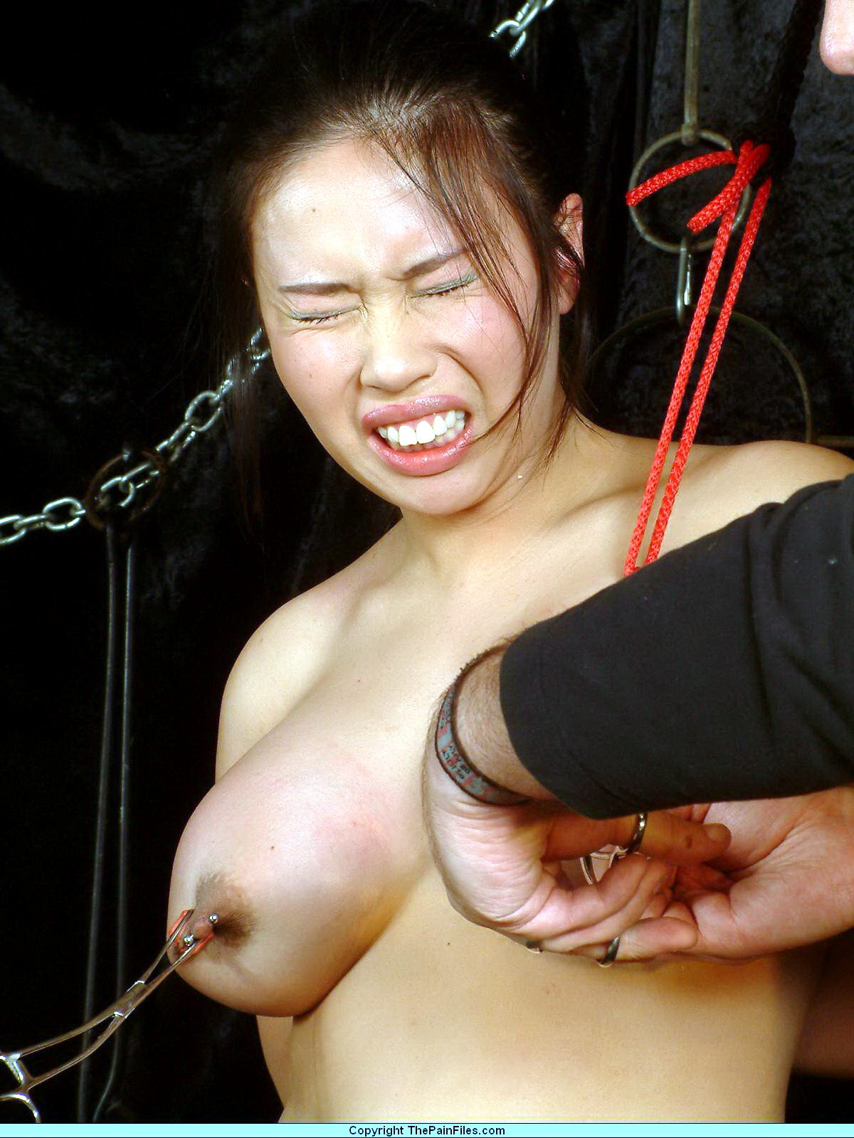 Female domination galleries XXX