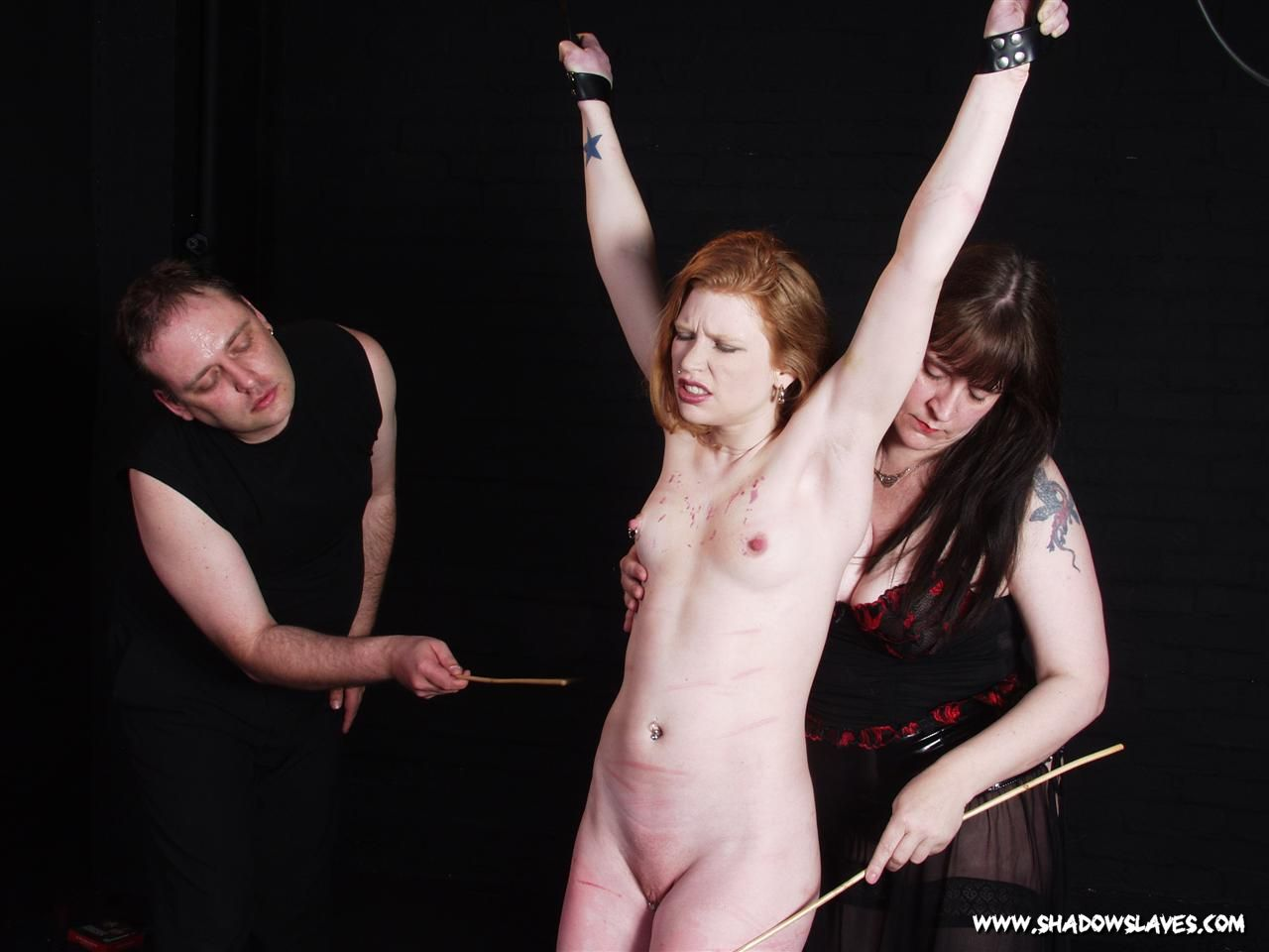 madison young bondage videos